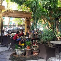 Bright yet shady and green garden to enjoy your coffee at