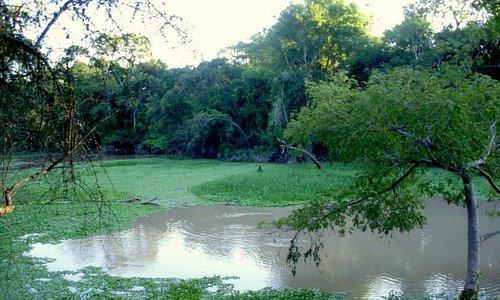 Reserva Natural Formosa