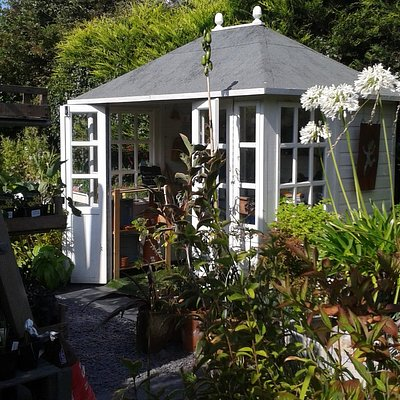 The nursery with loads of tempting plants