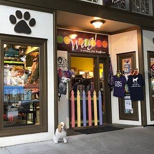 Wag! A Unique Pet Boutique