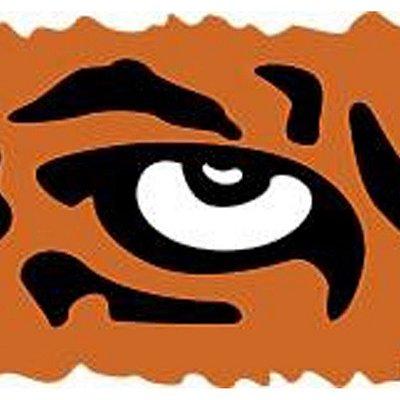 Logo of Wild Eye Travels
