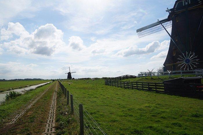 Walking path along the three wind mills