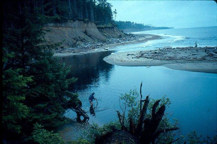 Naikoom Provincial Park