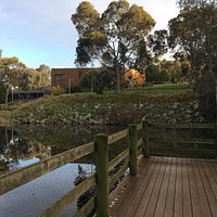 lovely lake at entrance to Jock Marshall reserve