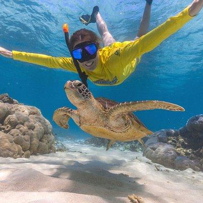 Swim with turtles!!