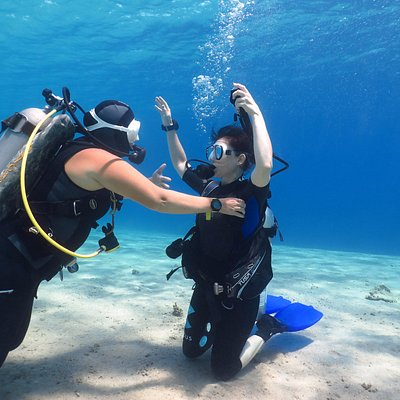 PADI Open Water Course with Darya Goz