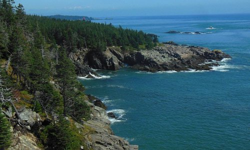 Looking N from coastal trail (see lighthouse)