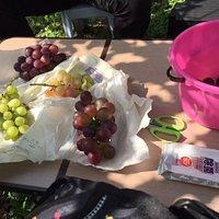ぶどう園の中のテーブルの上に取ってきたぶどうを並べました。私物のウエットティッシュは必需品です。