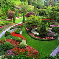 Beautiful Botanical Garden view 3