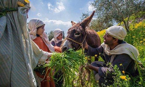 Nazareth Village - Living history farm and village.