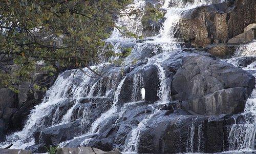 Pedras, águas e ave.