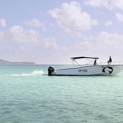 Dodo Divers boat