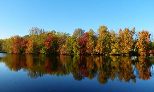 Fall at Lums Pond State Park