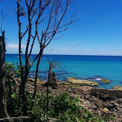 nice view of ocean