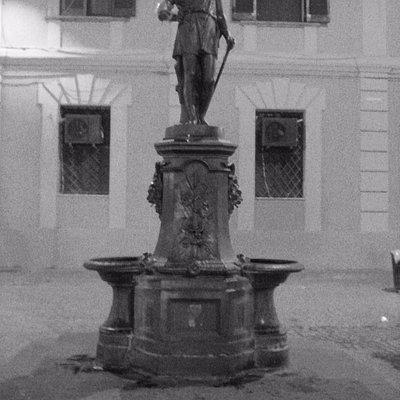 COSENZA - FONTANA DI GIUGNO su Corso Mazzini - (2)