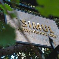 SIMUL