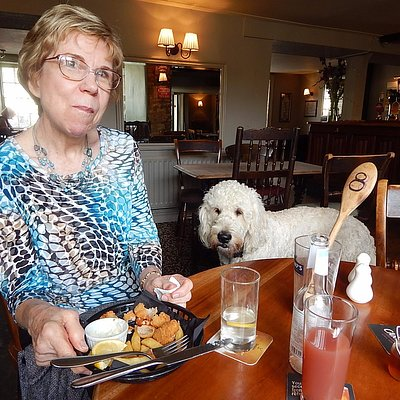 """Greasy prawns and owner's """"friendly"""" dog"""