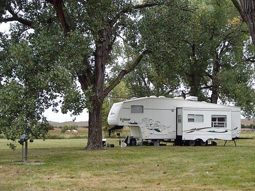 Camping under the cottonwoods at Ballards Marsh Wildlife Management Area