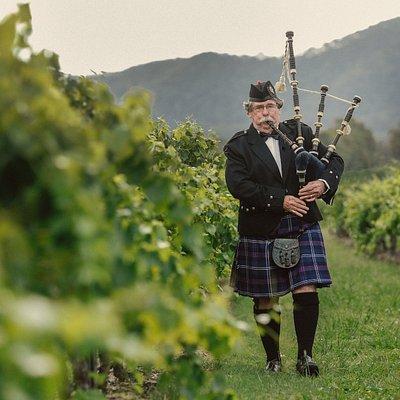 Robert McLeish in the McLeish Estate vineyard