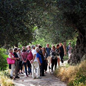 Azogires walking tour