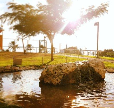 Raanana Park