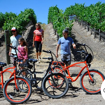 Private vineyard tours with electric biking access