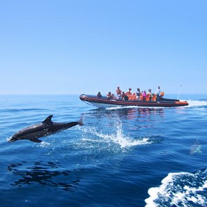 Algarvexcite Watersports Vilamoura & Albufeira