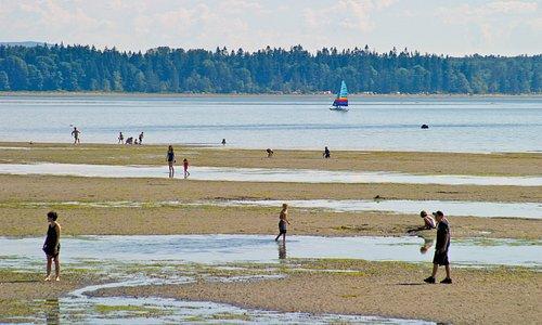 Birch Bay high tide