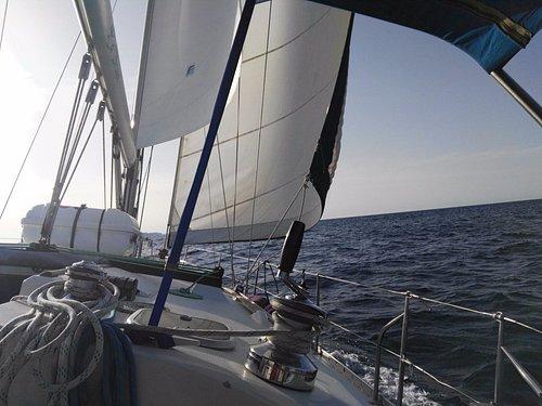 Velero la Bruja navegando