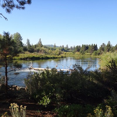 Still Waters Deschutes River
