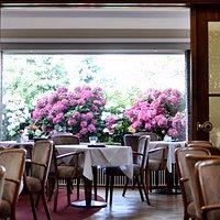 Cafe & Restaurant Inneraum
