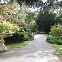 Marie-Louise Gardens, Manchester. (It's not a garden, it's an arboretum.)