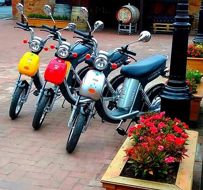 Three of our bikes along the Hahndorf Main Street.  Such a fun way to get around!