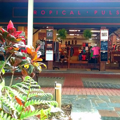 Tropical Pulse on the main street in Kuranda. Come sit and cool off under the shade of our Fig t
