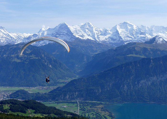 Paragliding with a view to the Bernese Alps and Lake Thun