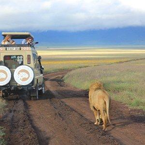Soul of Tanzania - Safari in Ngorongoro