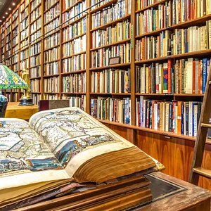 Old Florida Book Shop is home to over 30,000 books.