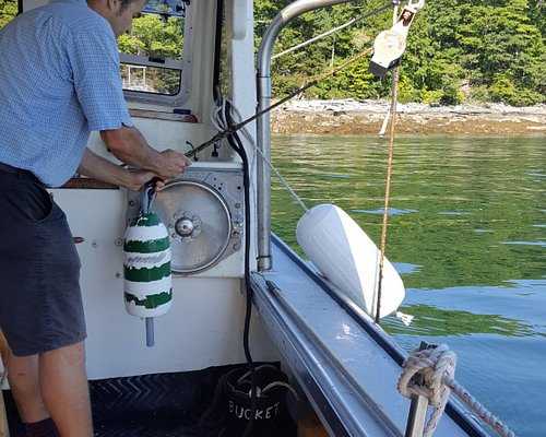 Captain Rob brings in a lobster trap for us.