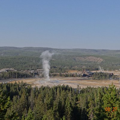 Old Faithful and thermal area