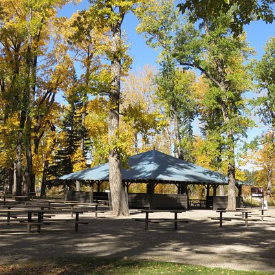 One of the many bookable picnic sites