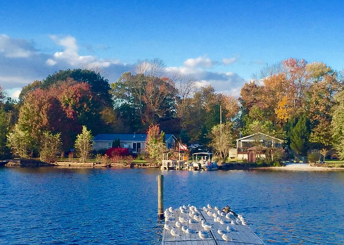 A fall day on the lake