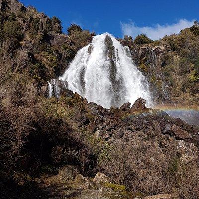 Waratah Falls, just stunning