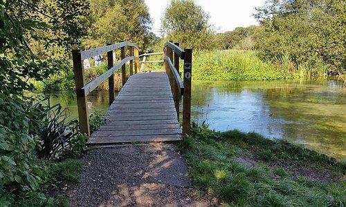 Bridge over to river walk