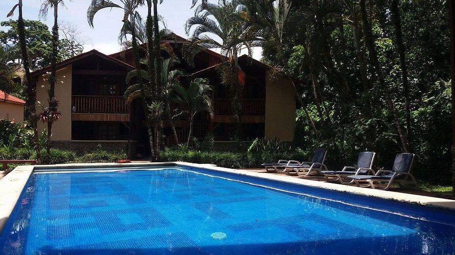 yeso péndulo Asistente  HOTEL PERLA NEGRA - Prices & Lodge Reviews (Costa Rica/Limon) - Tripadvisor