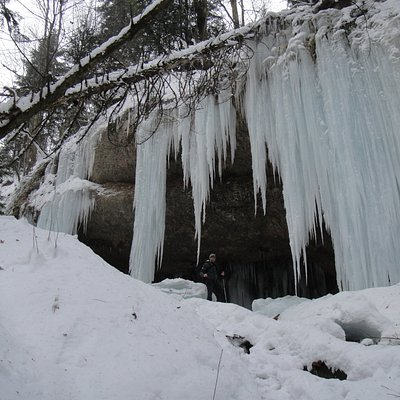 Icicles tall as trees