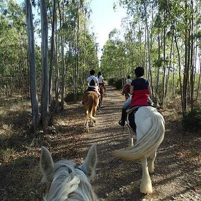 Il Primo tra i Ranch in Sardegna a praticare la monta western, e uno dei pochi centri in tutta l