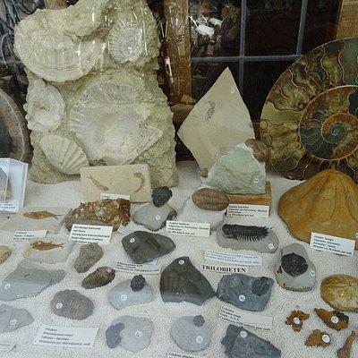 -Stenelux Mineralen en Fossielen tegenover Rijksmuseum-