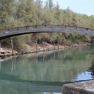 Ponte di Poveglia