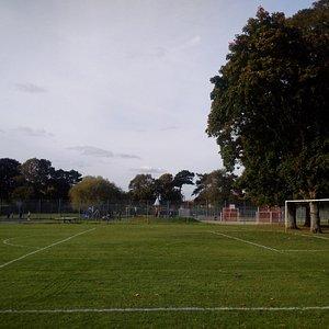 West Side of Alexandra Park