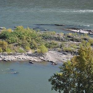 Blick zum Rhein
